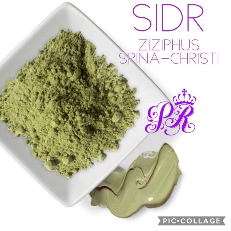 SIDR (Sedr, Ziziphus, Zizyphus, nabq)
