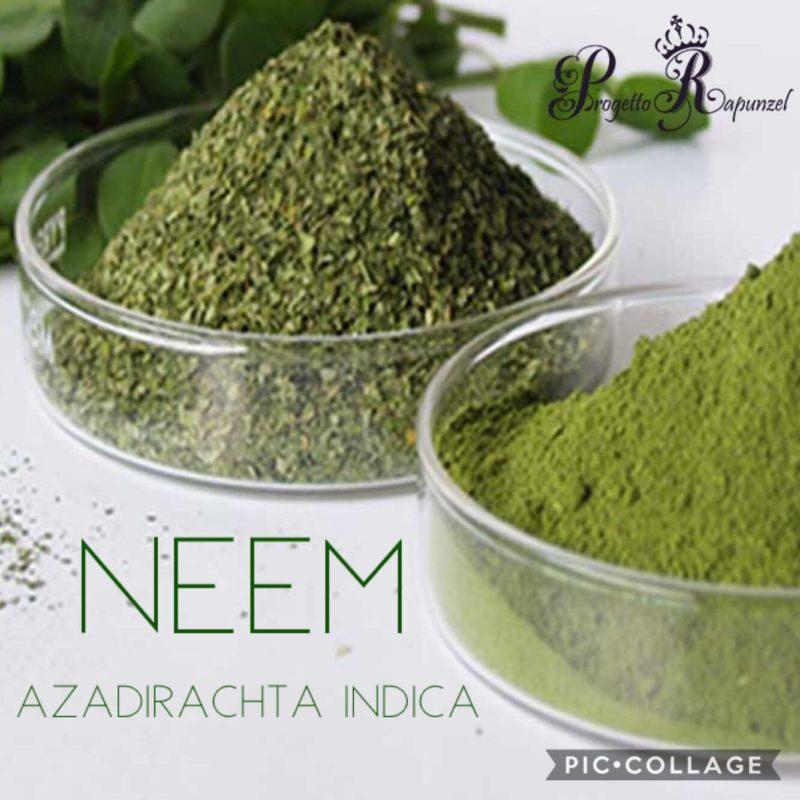 NEEM (Nīm)
