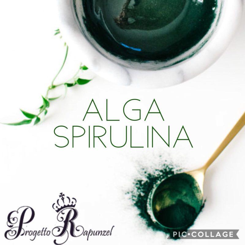 La Spirulina (Arthrospira platensis)