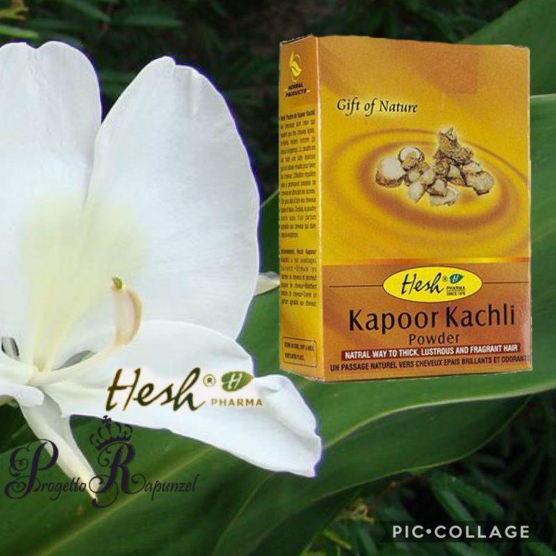 Hesh Pharma Kapoor Kachli (polvere)