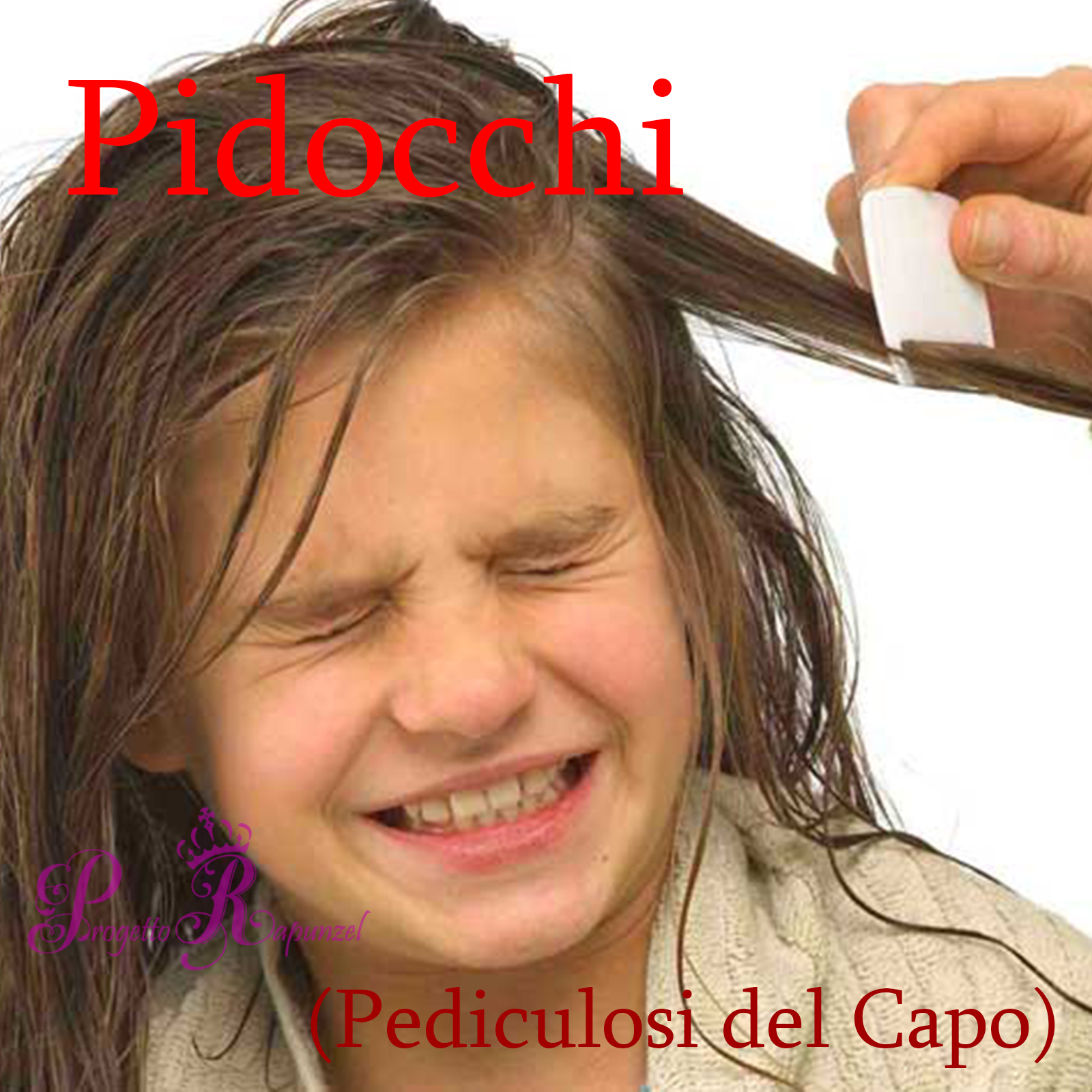 Pidocchi (Pediculosi del capo)